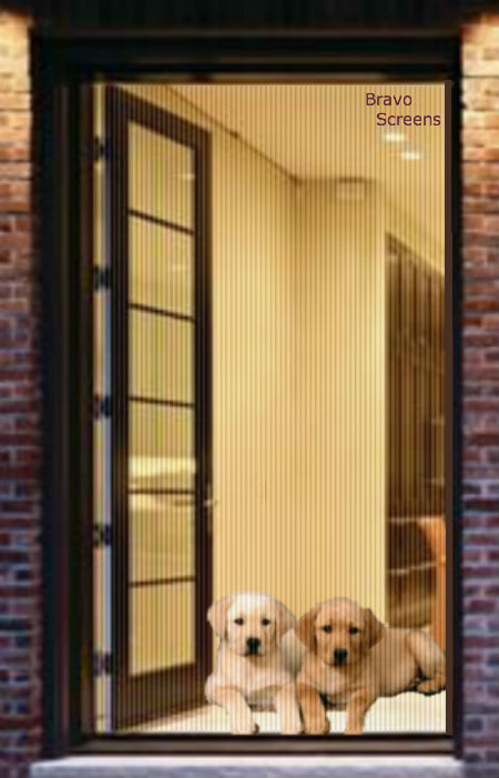 Retractable Pet Screen Single Door